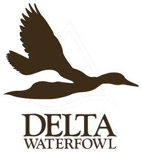 The Arch Chapter of Delta Waterfowl | www.archdelta.com